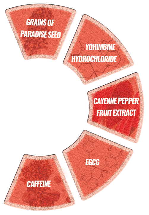 nutrients chart