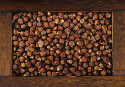 Grains of Paradise Seed Extract