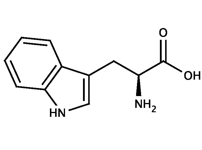 Melatonin and L-tryptophan